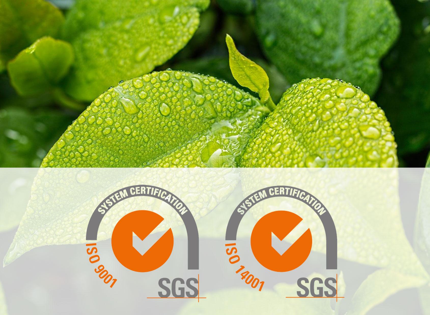 Certification ISO Qualité et Environnement (9001:2015 et 14001:2015)
